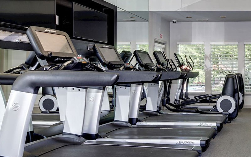 treadmills in the fitness center with large windows letting in natural light